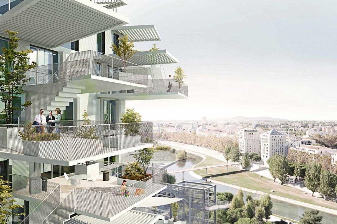 برج مسکونی زیبا ؛لانه کردن صدها انسان در درخت سفید