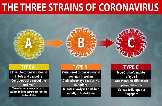 شناسایی 3 گونه مختلف ویروس کرونا توسط محققان دانشگاه کمبریج شمار مبتلایان کانون شیوع کرونا در کره جنوبی صفر شد پیش بینی کانادا درباره احتمال افزایش قربانیان کرونا تا 22 هزار نفر