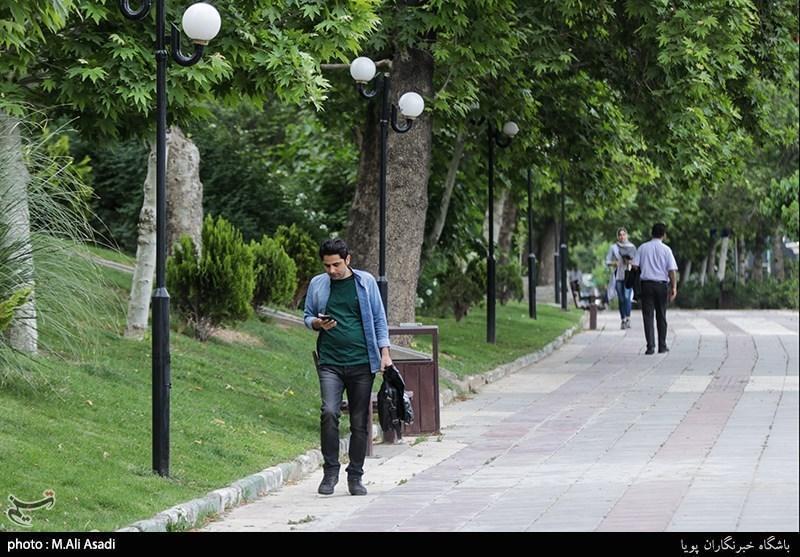 طرح احداث سطوح سبز در شهر قم اجرا می شود