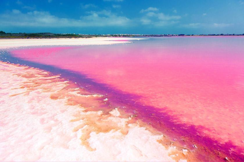 معرفی زیباترین ساحل های دنیا به رنگ صورتی