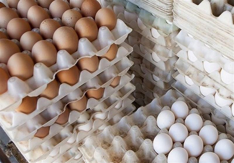 عرضه هر شانه تخم مرغ بالاتر از 29 هزار تومان تخلف است