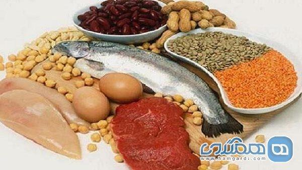 بهترین پروتئین های گیاهی که جایگزین گوشت قرمز می شوند